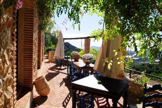 Finca el Tossal : The patio