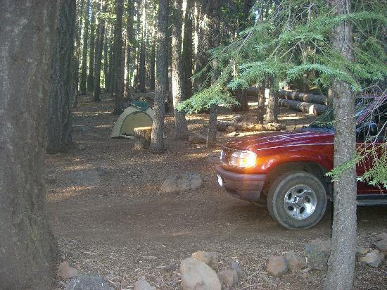 Cherry Hill Campground : From the loop to the tent area/fire ring.