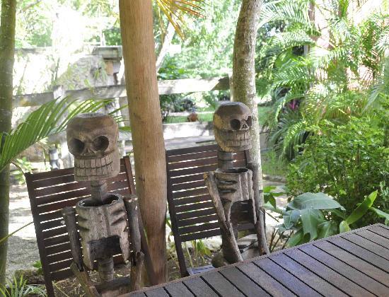 Hacienda Hotel Santo Domingo : surveillants de la piscine !