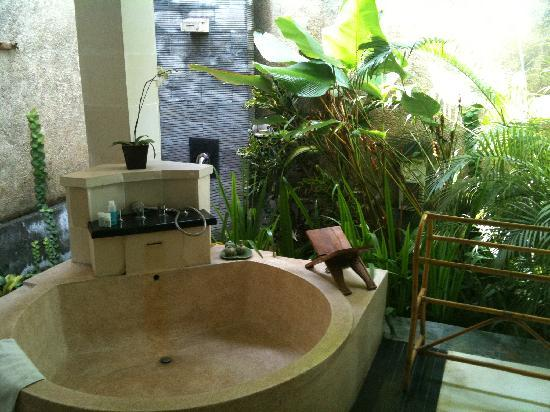 The Sanyas Suite Seminyak: Nice plants but lots of mosquitoes
