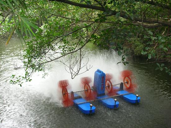 Tanghu Park: Tangfu Park-10 Water Wheel 水车