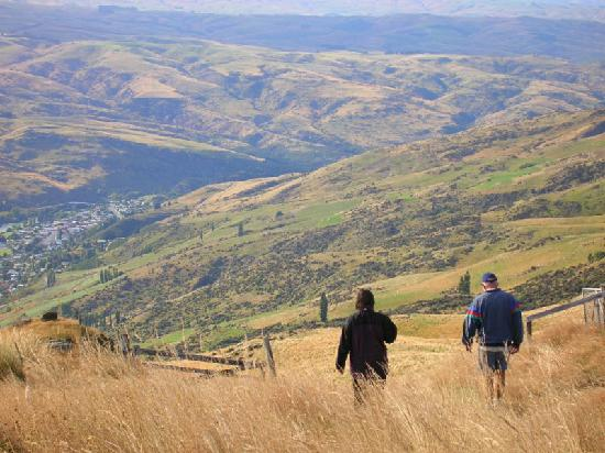 Lake Roxburgh Lodge & Restaurant: Great hills & tracks to walk