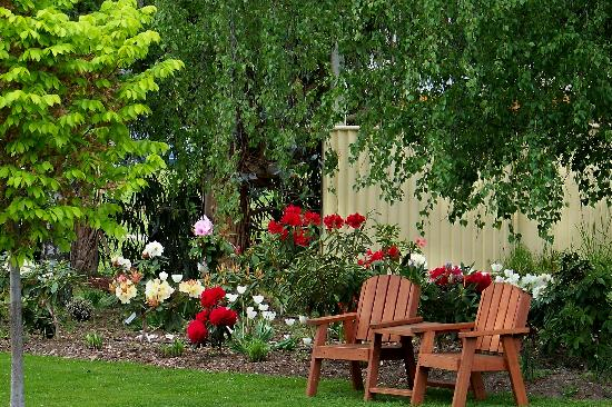 Lake Roxburgh, New Zealand: Enjoy our colourful gardens