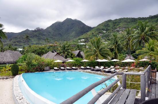 Sofitel Moorea Pool Where I Did Very Short Laps Picture Of