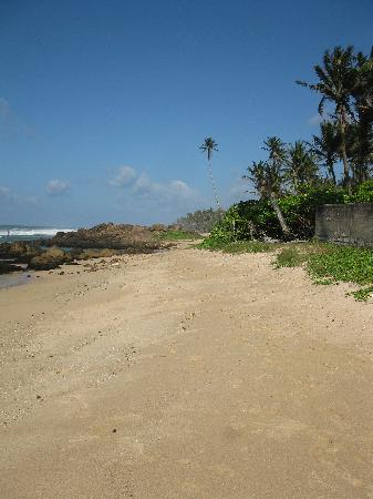 Barberyn Beach Ayurveda Resort: Strand bij Weligama
