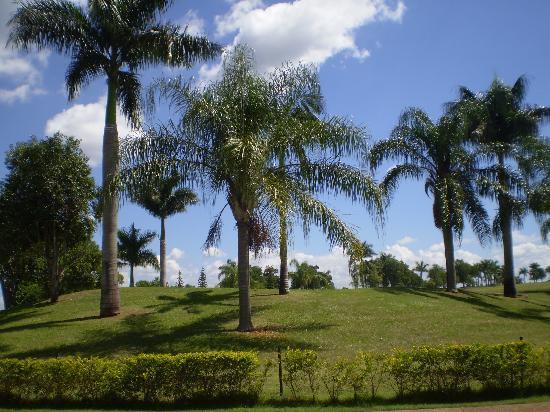 Wish Resort Golf Convention Foz do Iguaçu : ホテルの中にワンシーンです。