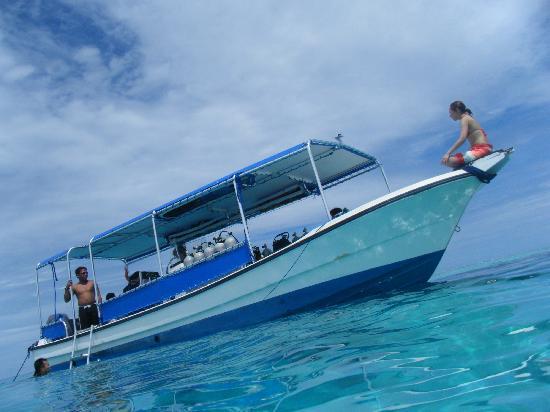 Palau: 広ーい海