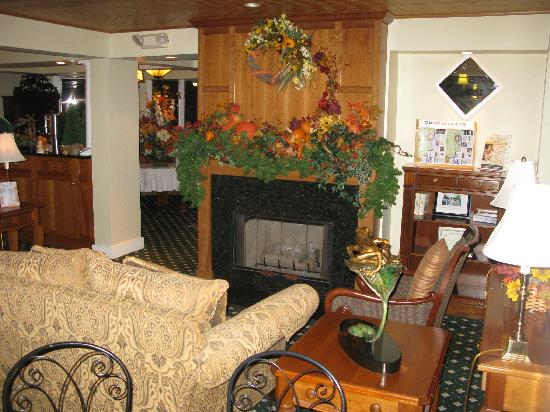 Meadowmere Resort: The nice TV room