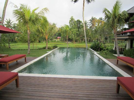 Villa Sabandari: The best pool in Bali