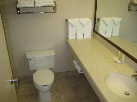 Crowne Plaza Hotel Chicago - Northbrook: Mostly New Bathroom