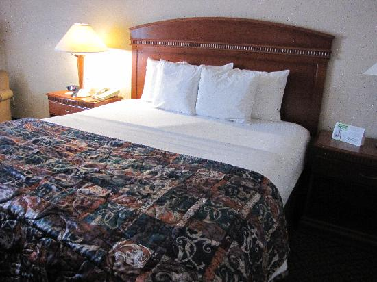 The Comfort Inn & Suites Anaheim, Disneyland Resort : Bed