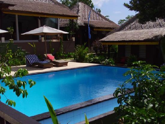 Pandana Guest House: the pool