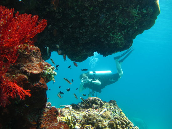 Сенгиджи, Индонезия: fonds de rêves...