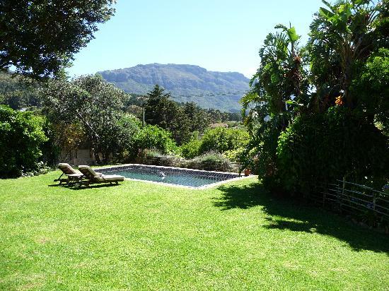 El Misti : garden & pool