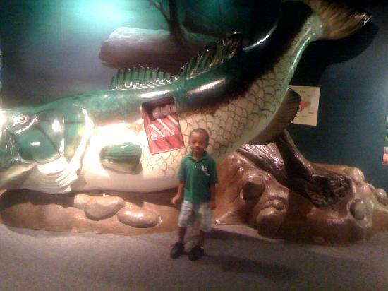 McWane Science Center: Sean and the bigfish- Mcwanye Center