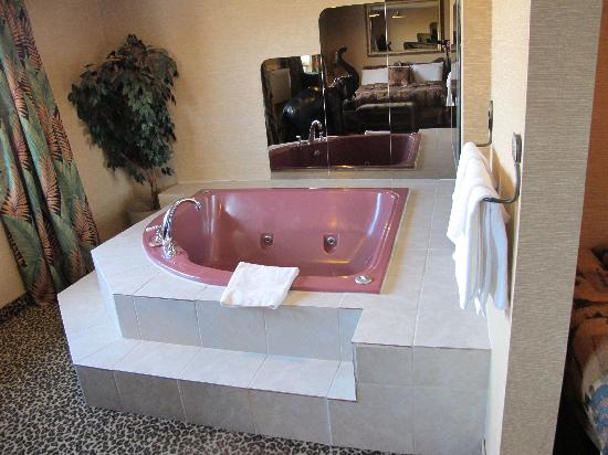 First Canada Inns: Safari Jacuzzi Suite