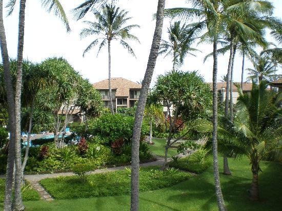 Pono Kai Resort: Coutyard and pool area