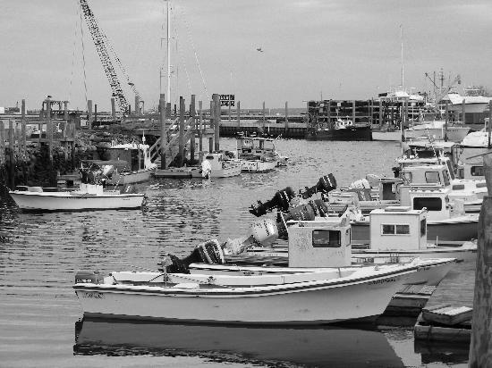 Tower House B&B: Local fishermen