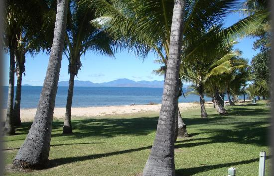 Island Palms Resort: The Beach in front of Island Palms