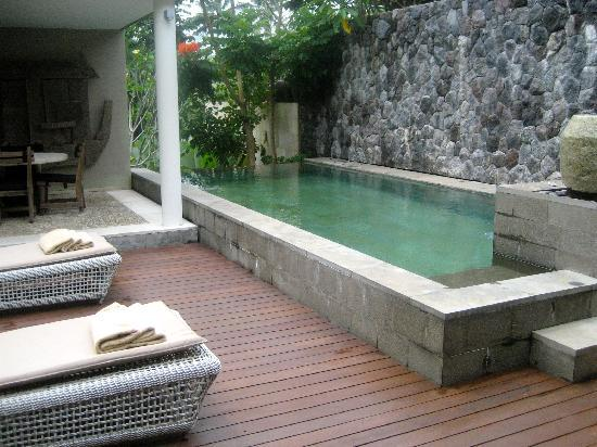 The Purist Villas and Spa : My own private pool