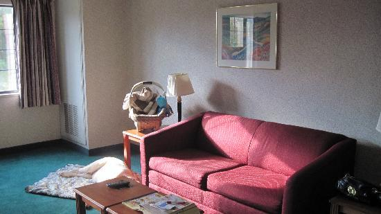MainStay Suites of Lancaster County: Living area