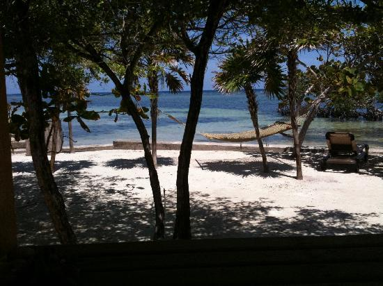 Barefoot Cay: The view from our patio! GORGEOUS.