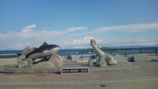 Oma-machi, Japan: マグロ一本釣り!!