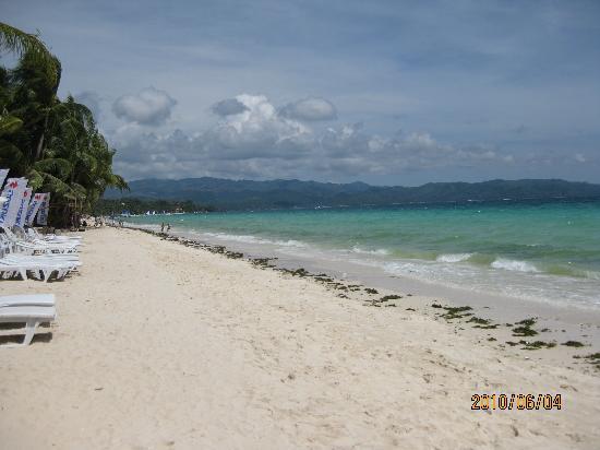 Dive Shop Island Staff : 白砂のビーチ