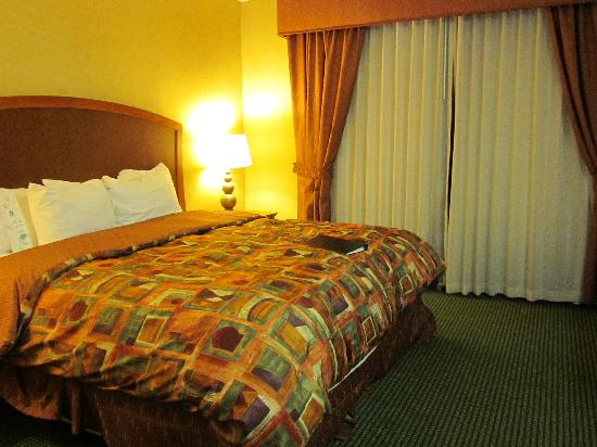 Embassy Suites by Hilton Greensboro - Airport: Bedroom
