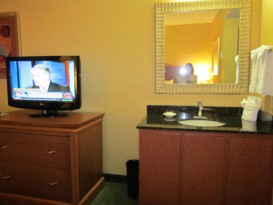 Embassy Suites by Hilton Greensboro - Airport: Bedroom TV and Sink/Vanity