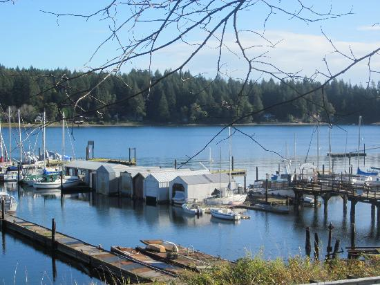 Longbranch, WA: view from the property