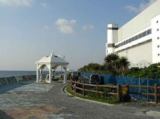 Miyagi Coast: 宮城海岸 シーズンオフで波も良くないので人がいない