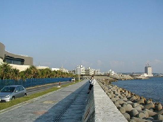 Miyagi Coast: 宮城海岸から美浜の方を望む