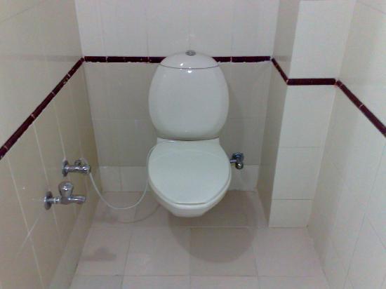 Hotel Udai Niwas: トイレ