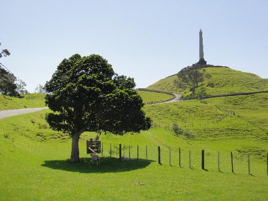 Mohio Tours: One Tree Hill