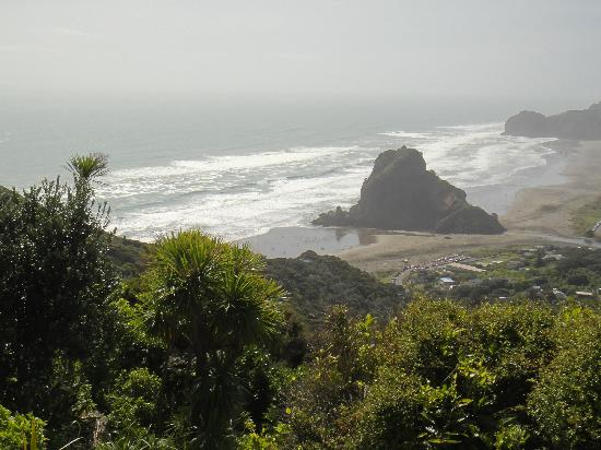 Mohio Tours: Lion Rock - Piha beach