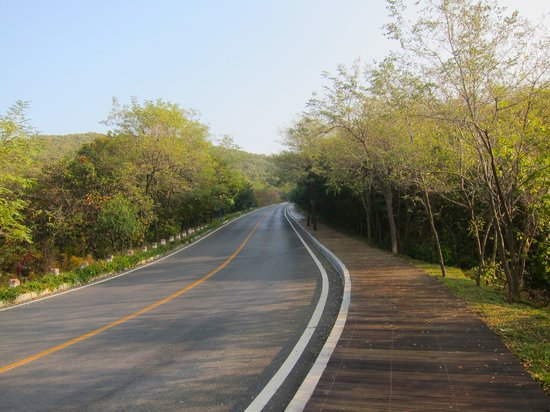 Binhai Road natural area