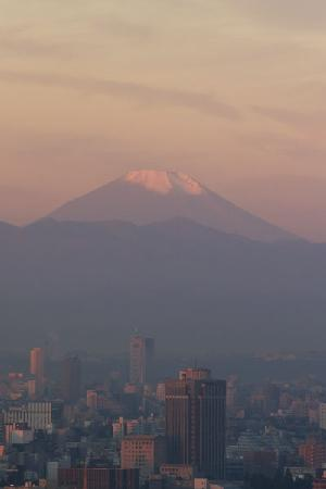 Park Hotel Tokyo: View of Mt. Fuji on a clear day