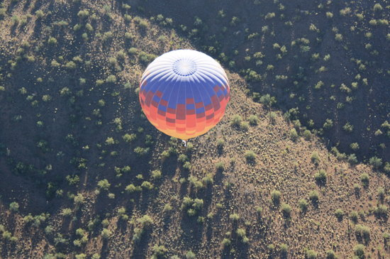 Unicorn Balloon Company