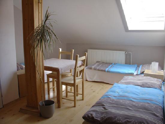 Hostel 5 - Plzenska : Room