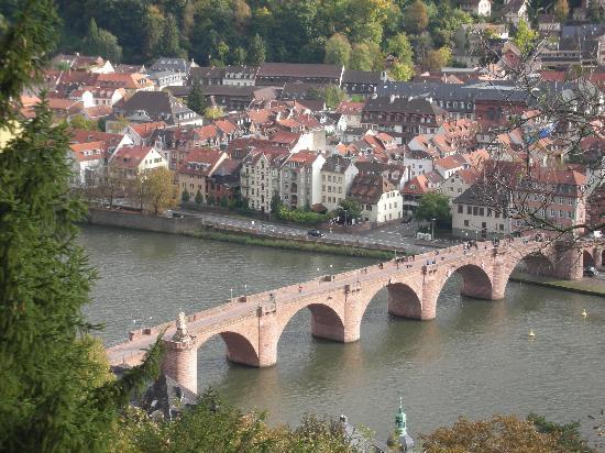 Apartments & Hotel Kurpfalzhof: Heidelberg view