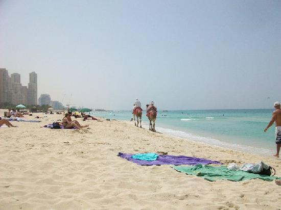 Plage et parc de Jumeira : Jumeirah Beach