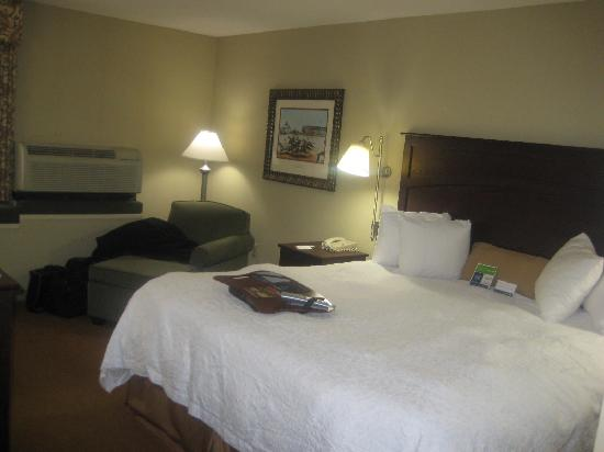 Hampton Inn Baltimore - Washington International Airport: Hotel room 206