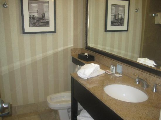 Hampton Inn Baltimore - Washington International Airport: Bathroom