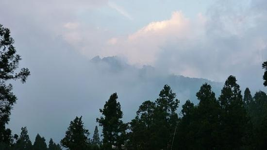 Chiayi County, Taiwan: View across Alishan Country Park