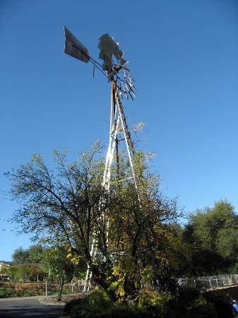 The Robin's Nest: Parking lot windmill