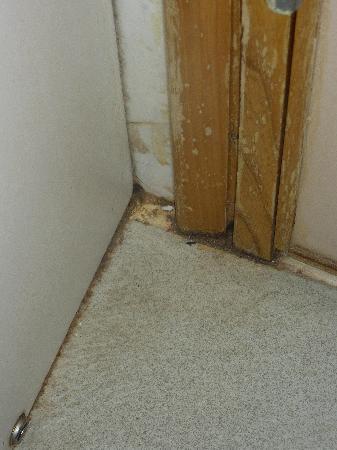 Mellieha Bay Hotel: behind the bathroom door