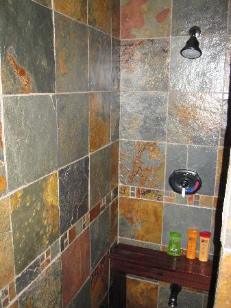 """Le Manoir du Rocher de Grand-Mere: Room """"Brise des Caraibes"""" - Nice shower"""