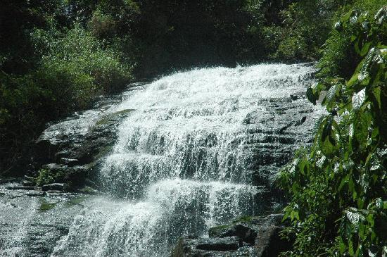 Honey Valley Estate: the waterfall
