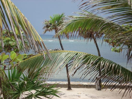 Barefoot Cay: View from our patio